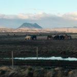 MATKA ZIEMIA pokochała Islandię tak gorąco, że podarowała jej dużo wulkanów.
